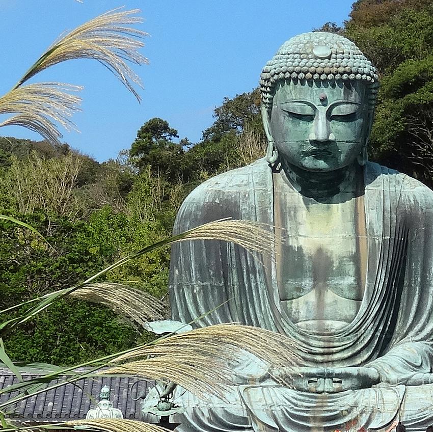 23 Kamakura:Dominika Szczechowicz
