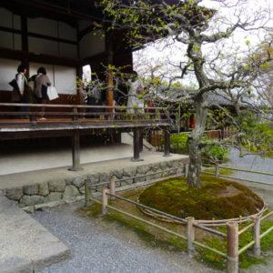 16arashiyama5