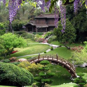 5 botanical garden