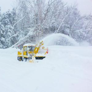 Hokkaido 9