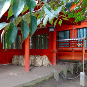 12Katori_wszystkiegojaponskiego przy bramie