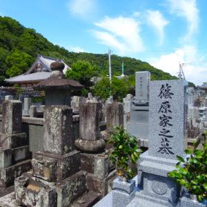 20.Tokushima_TERAMACHI