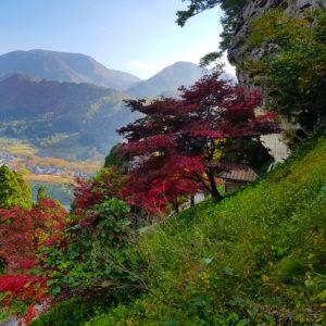 Yamadera, Wszystkiego Japonskiego 8