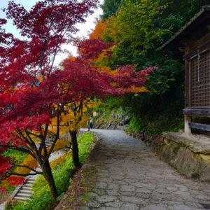 Yamadera, Wszystkiego Japonskiego 8b
