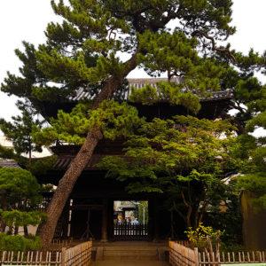 15 Senkakuji_wszystkiegojaponskiego